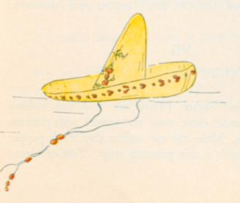"""""""SOMBRERO DE CHARRO"""". The Hat use by the Mexican cowboys. Some are embroidered in gold or silver. Many of them being worth several hundred pesos….12"""
